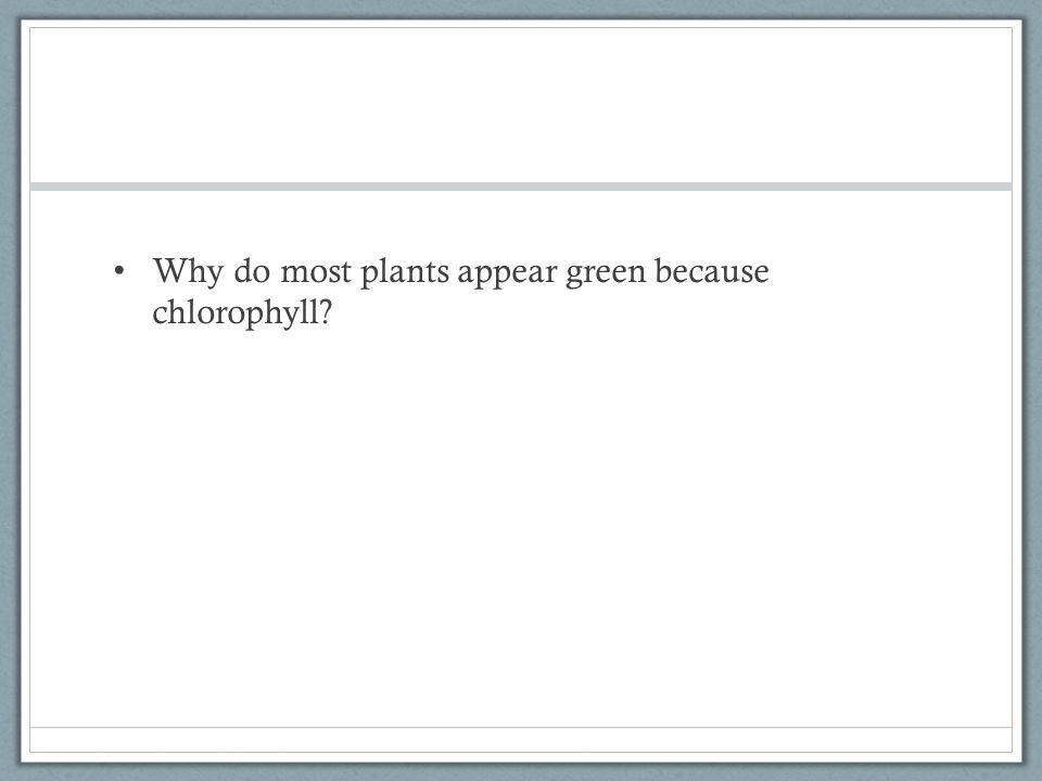 Why do most plants appear green because chlorophyll