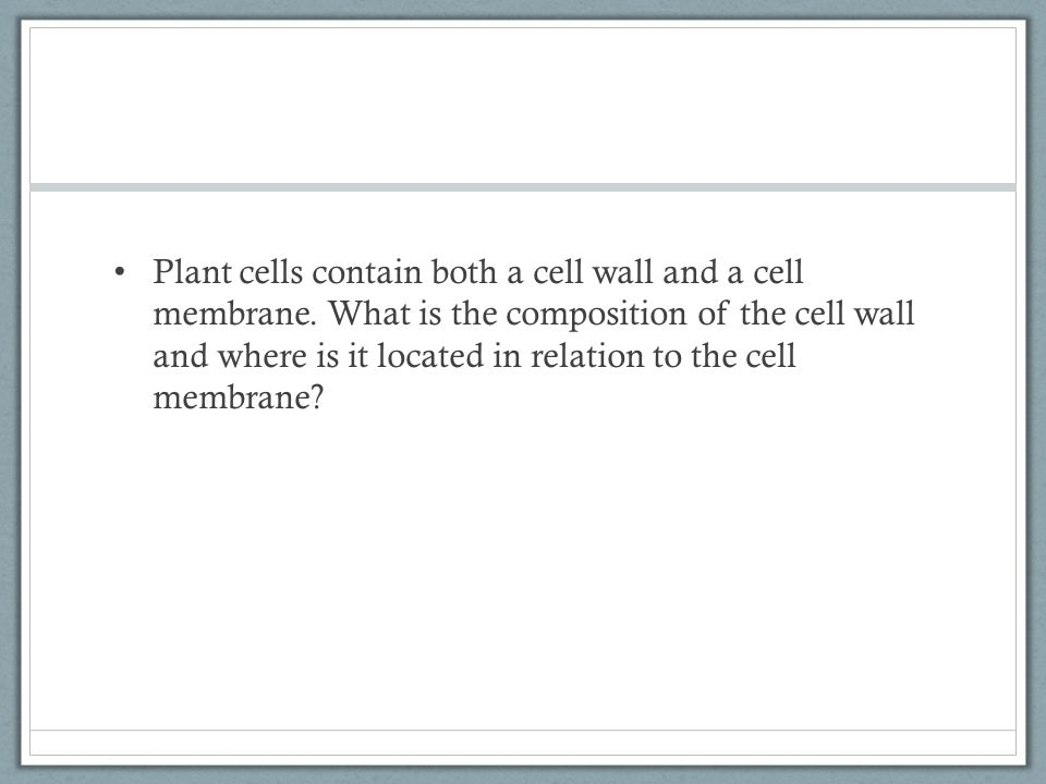 Plant cells contain both a cell wall and a cell membrane