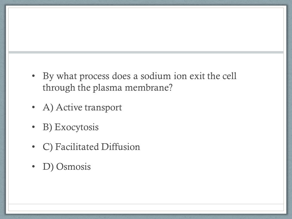 By what process does a sodium ion exit the cell through the plasma membrane