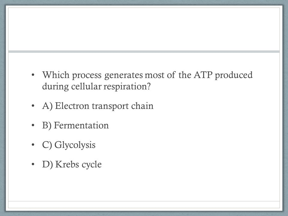 Which process generates most of the ATP produced during cellular respiration