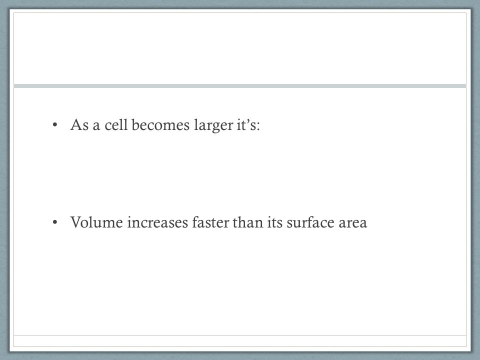 As a cell becomes larger it's: