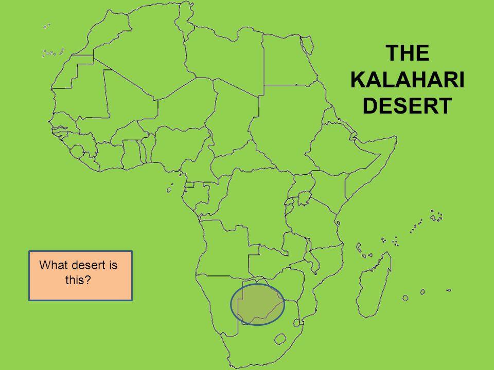 THE KALAHARI DESERT What desert is this