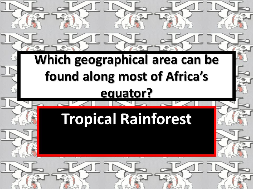 Which geographical area can be found along most of Africa's equator
