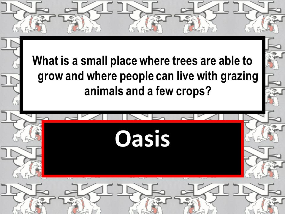 What is a small place where trees are able to grow and where people can live with grazing animals and a few crops