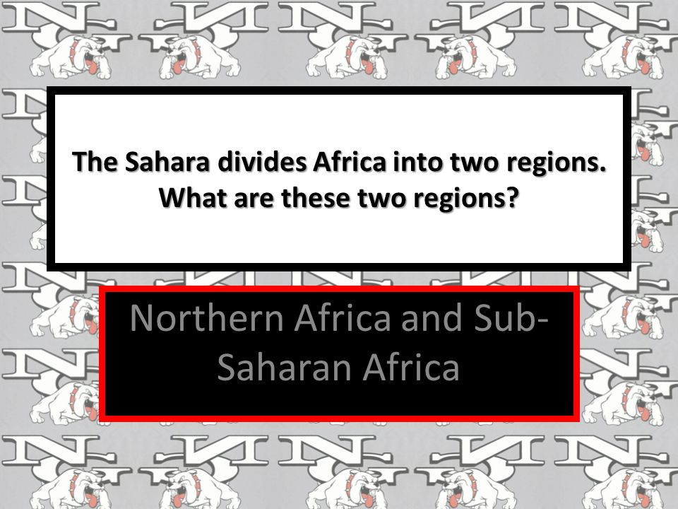 Northern Africa and Sub-Saharan Africa