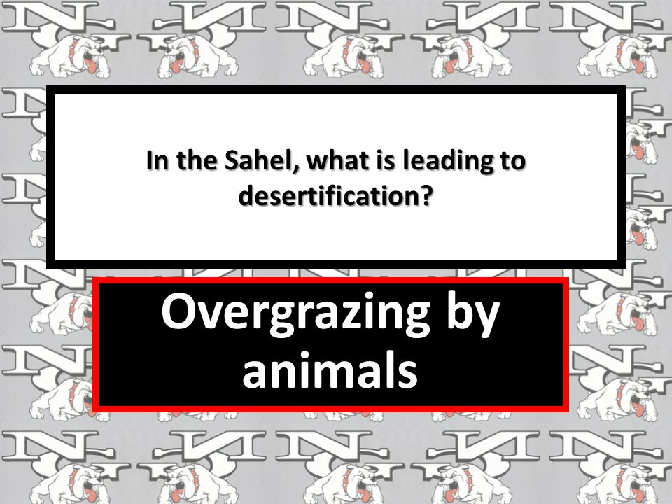 In the Sahel, what is leading to desertification