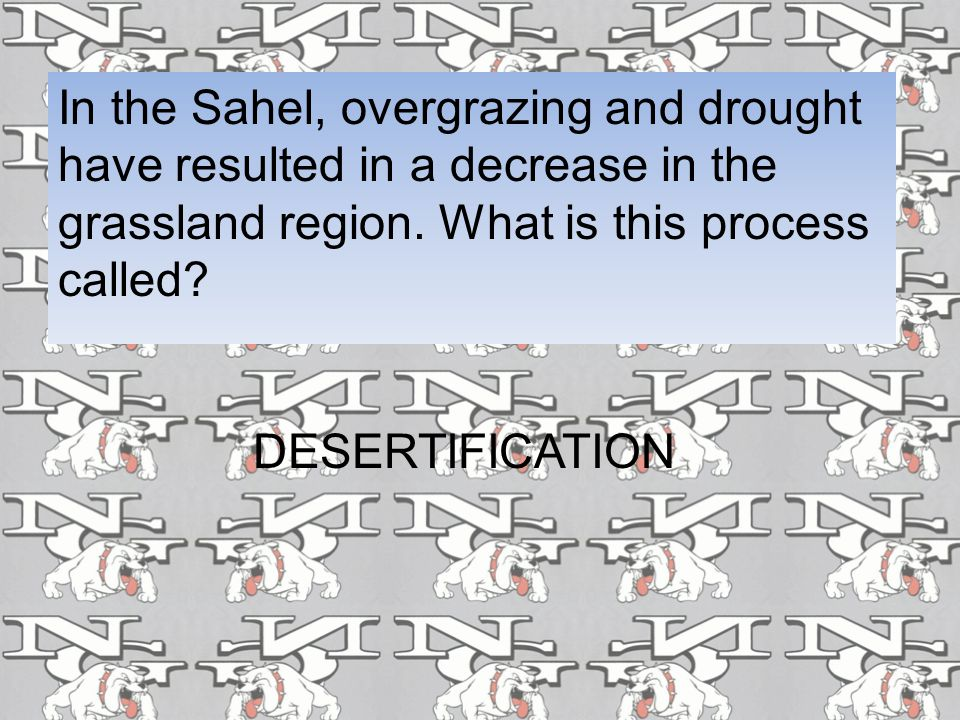 In the Sahel, overgrazing and drought have resulted in a decrease in the grassland region. What is this process called