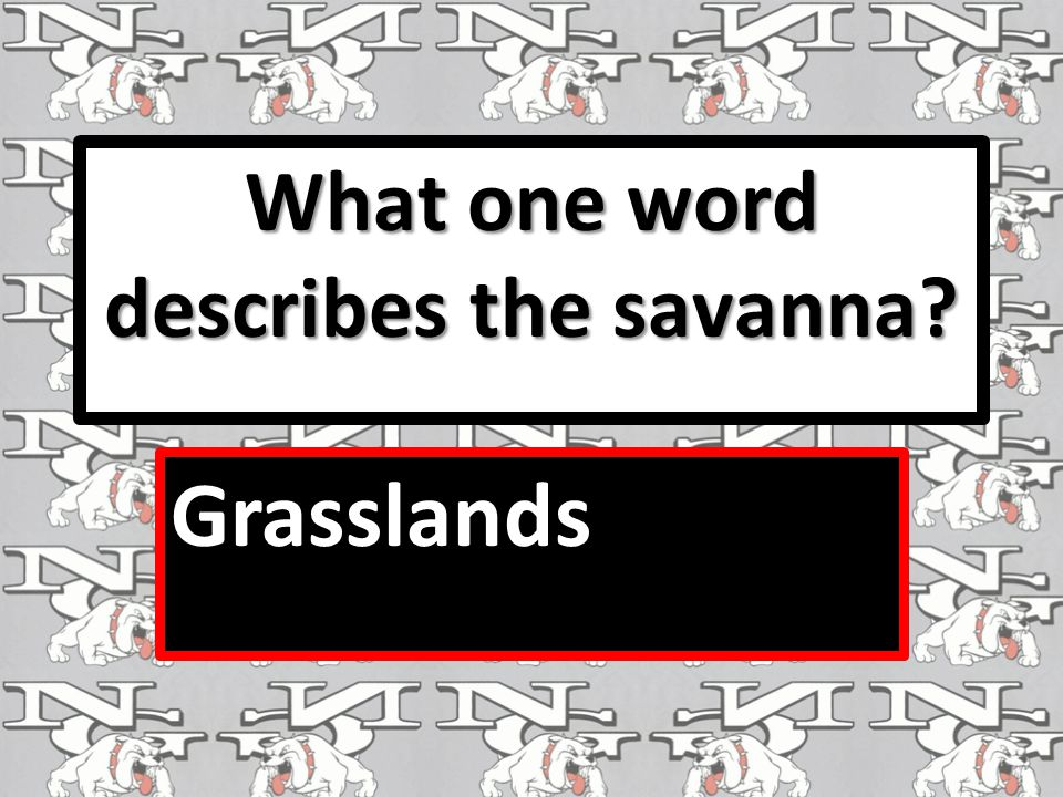What one word describes the savanna