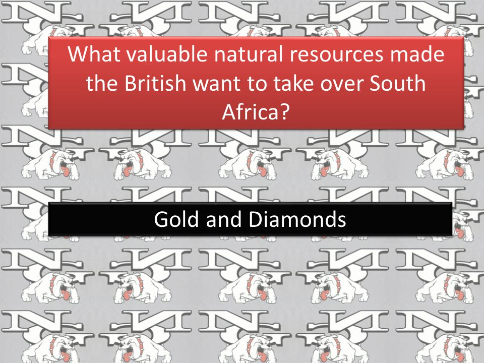 What valuable natural resources made the British want to take over South Africa