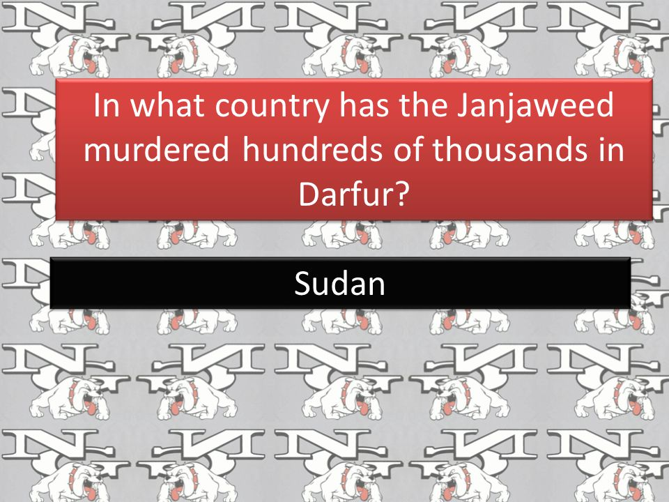 In what country has the Janjaweed murdered hundreds of thousands in Darfur
