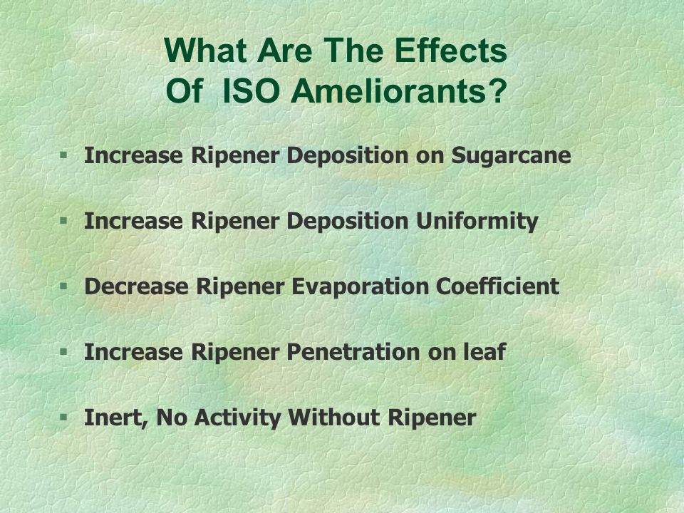 What Are The Effects Of ISO Ameliorants
