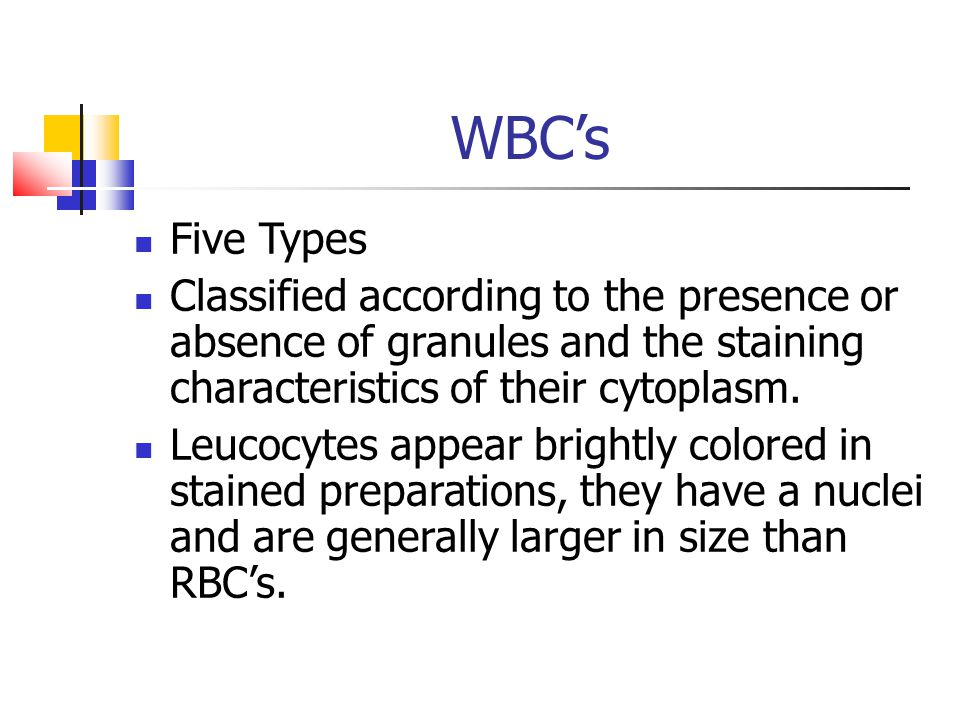 WBC's Five Types. Classified according to the presence or absence of granules and the staining characteristics of their cytoplasm.
