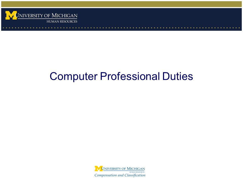 Computer Professional Duties