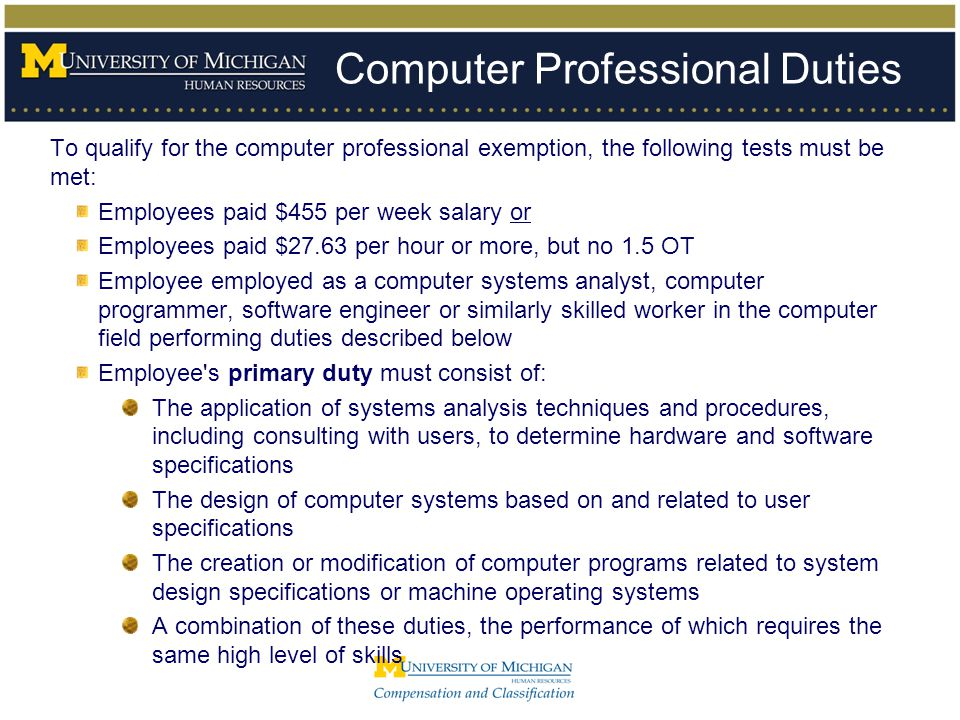 Computer Professional Duties