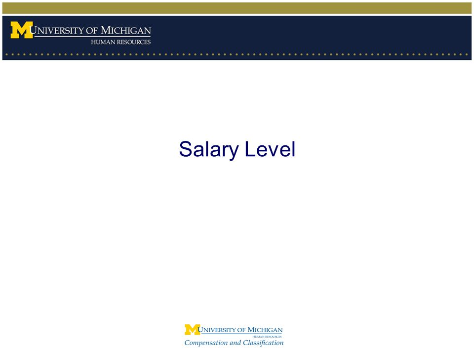 The FLSA at the University of Michigan