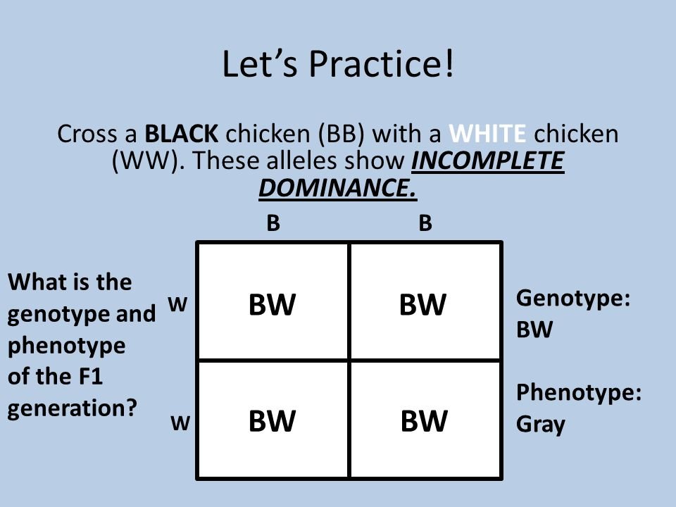 Let's Practice! BW BW BW BW