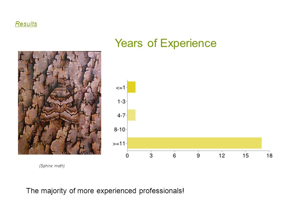 Years of Experience The majority of more experienced professionals!