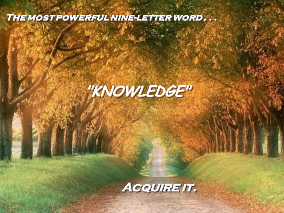 The most powerful nine-letter word . . .