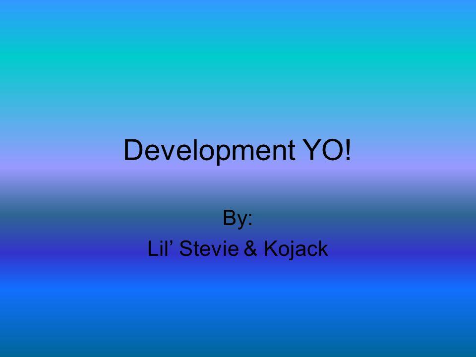 By: Lil' Stevie & Kojack