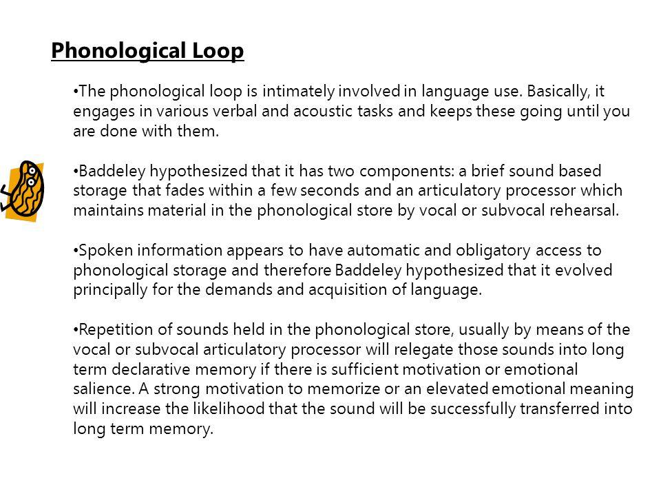 Phonological Loop