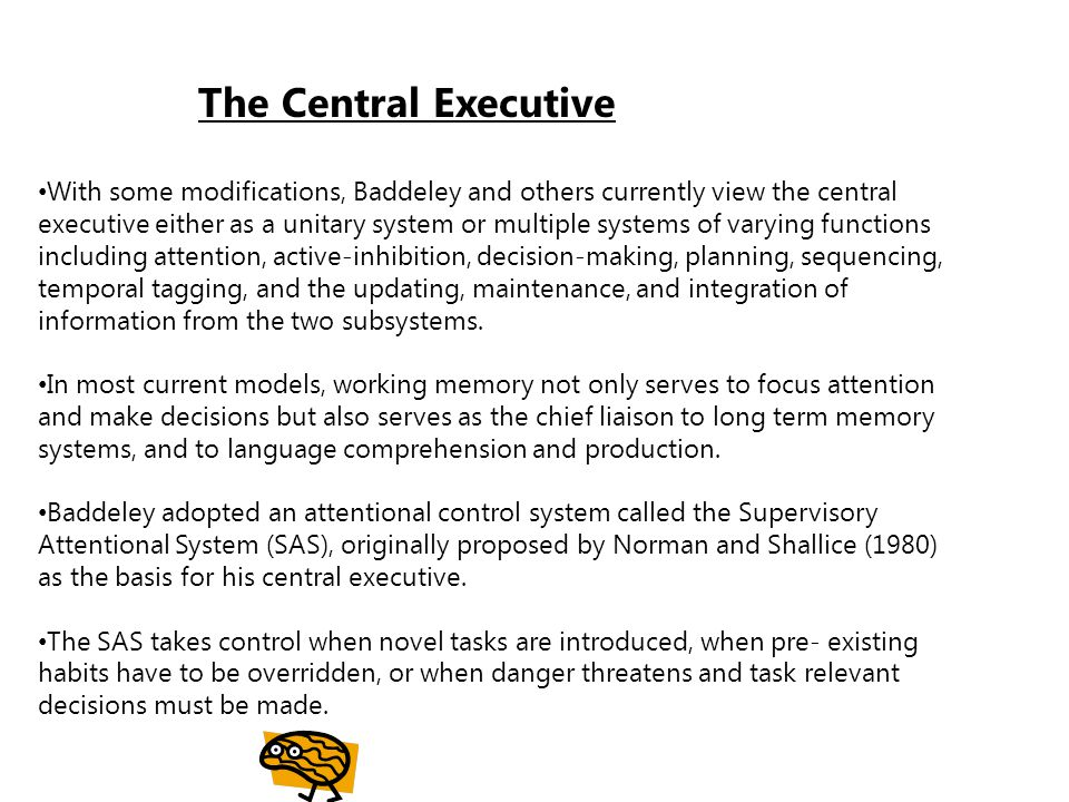 The Central Executive