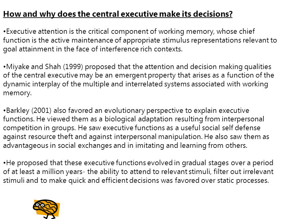 How and why does the central executive make its decisions