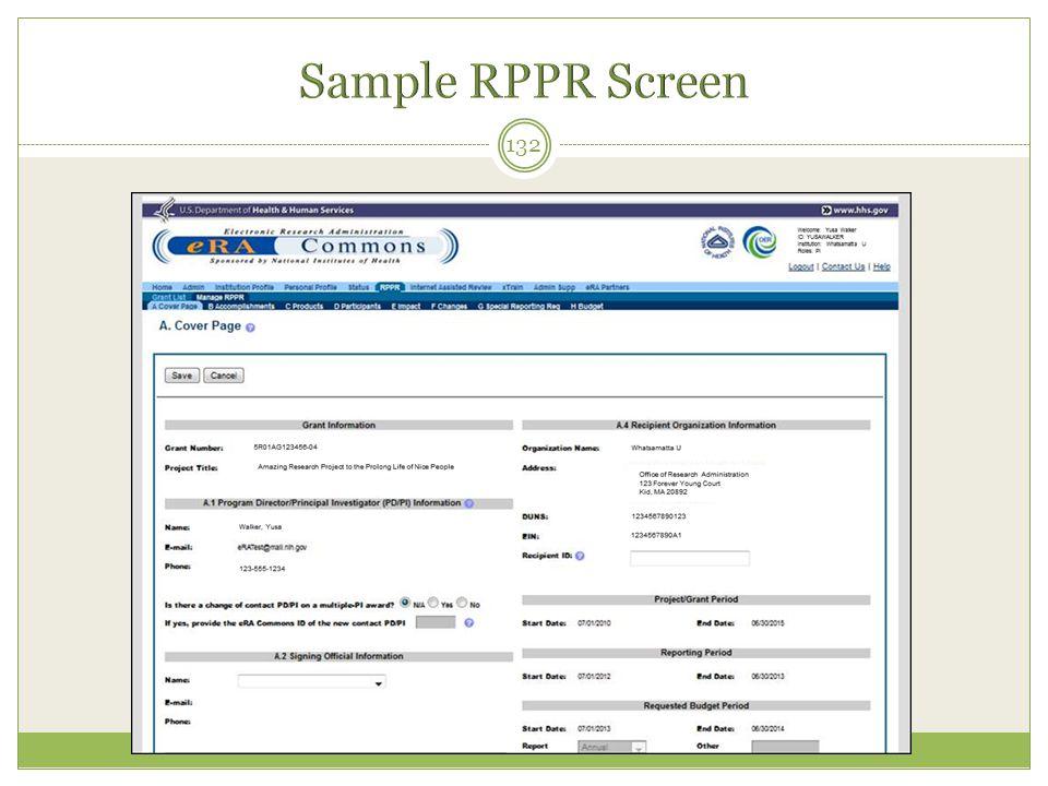 Sample RPPR Screen