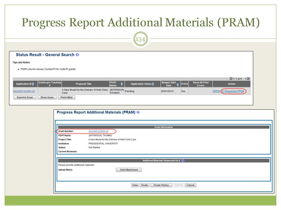 Progress Report Additional Materials (PRAM)
