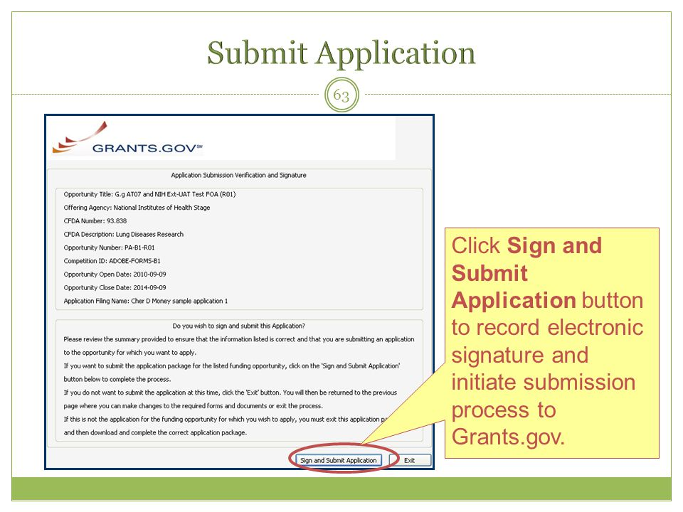 Submit Application Click Sign and Submit Application button to record electronic signature and initiate submission process to Grants.gov.