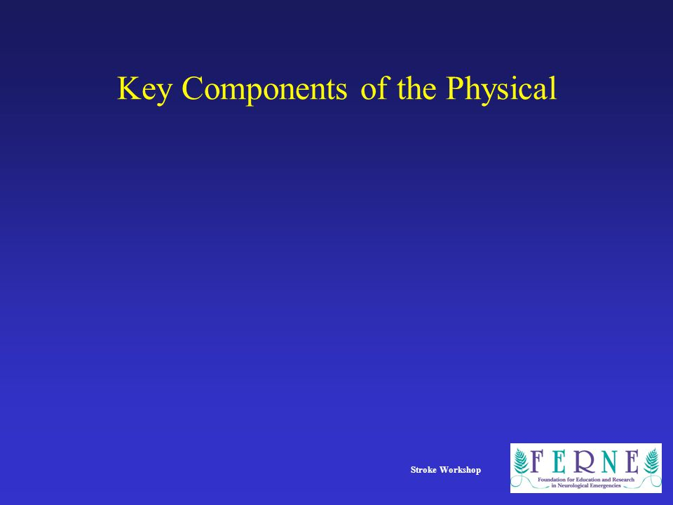 Key Components of the Physical