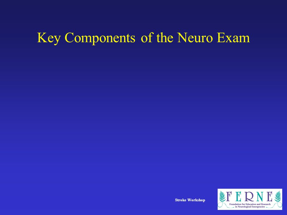 Key Components of the Neuro Exam