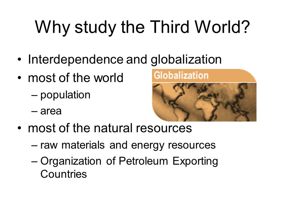 Why study the Third World