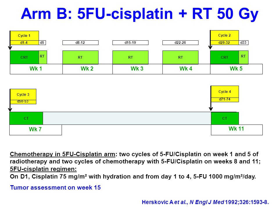 Arm B: 5FU-cisplatin + RT 50 Gy