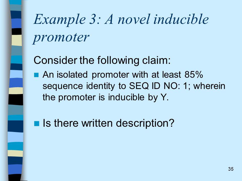 Example 3: A novel inducible promoter