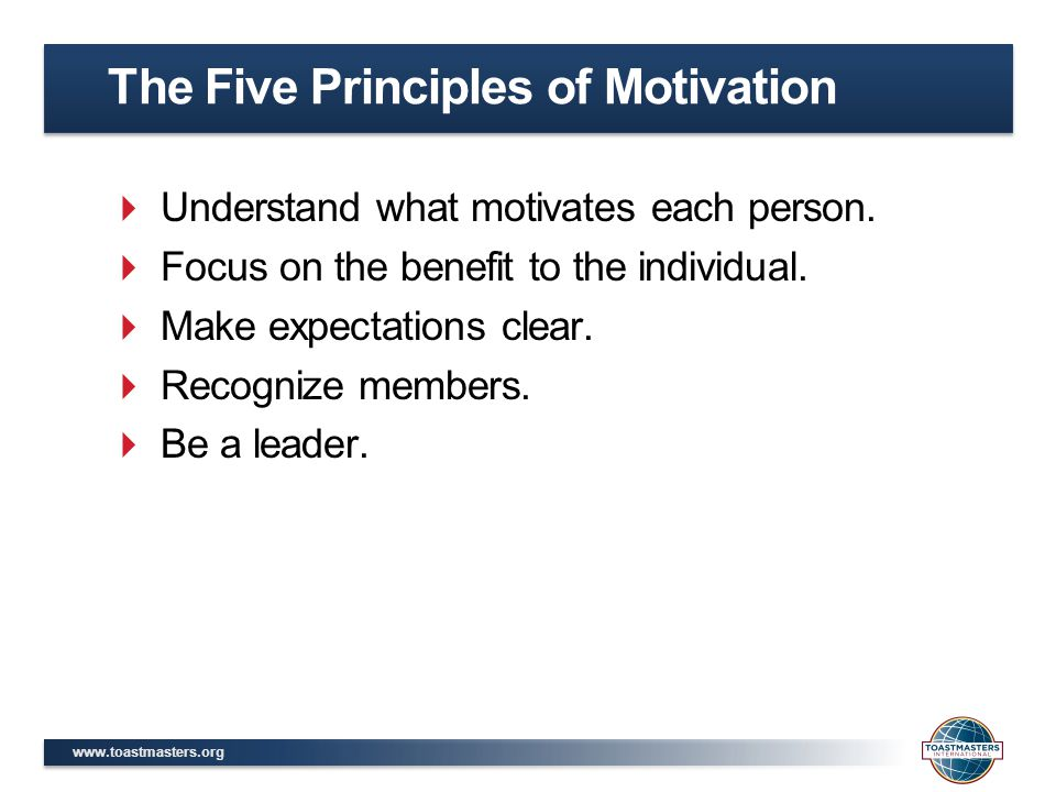 The Five Principles of Motivation