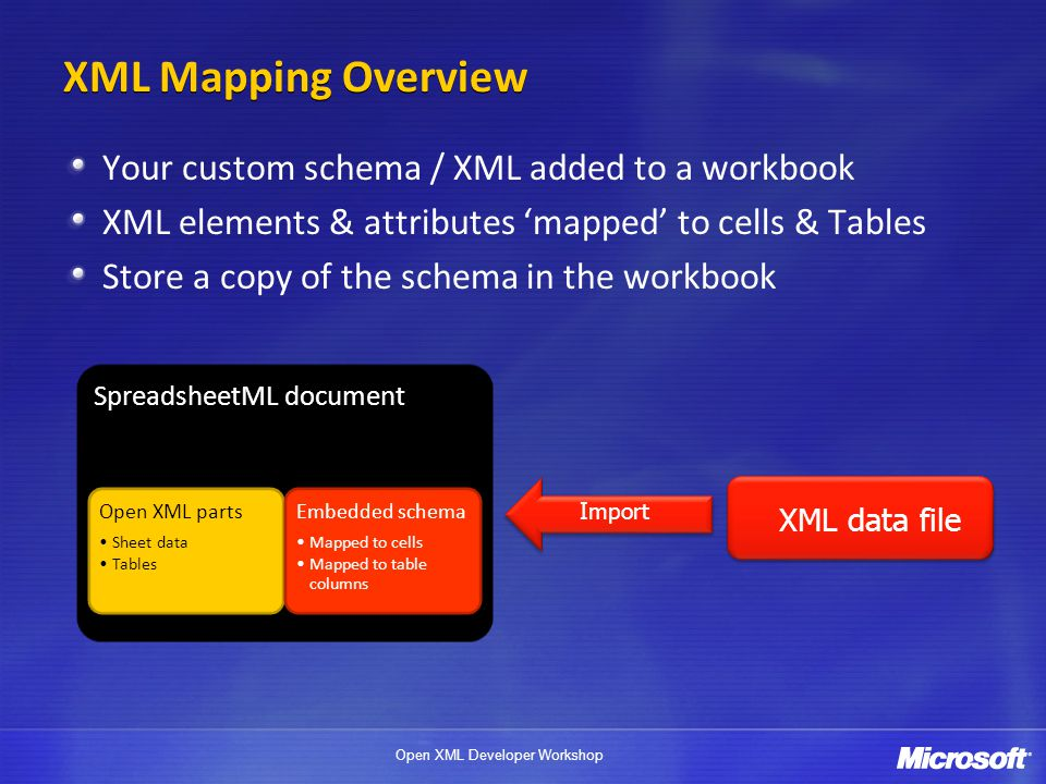 XML Mapping Overview Your custom schema / XML added to a workbook