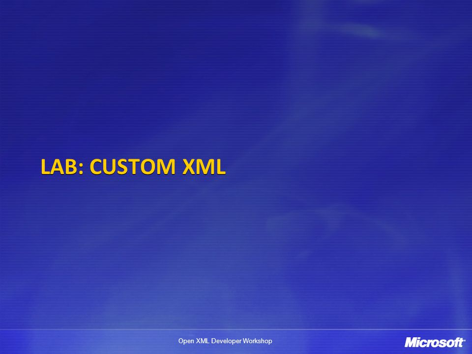 LAB: Custom XML