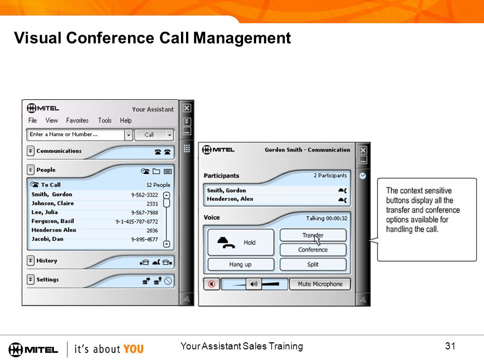Visual Conference Call Management