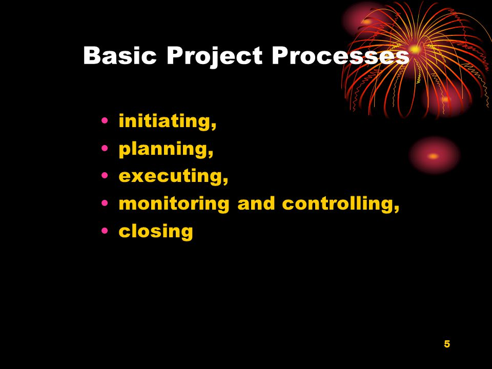 Basic Project Processes