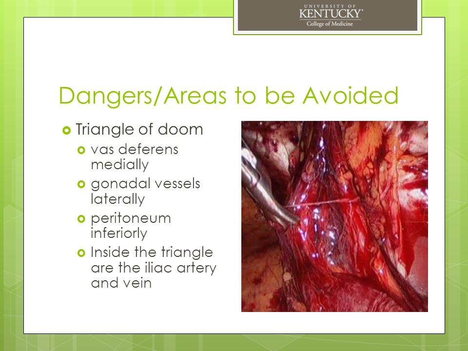 Dangers/Areas to be Avoided