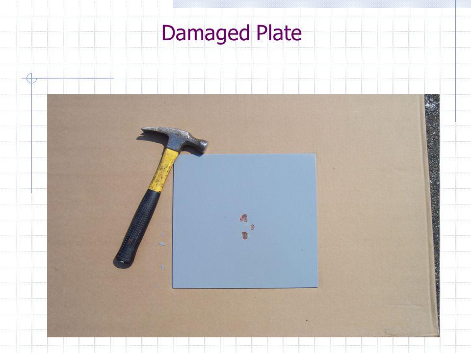 Damaged Plate