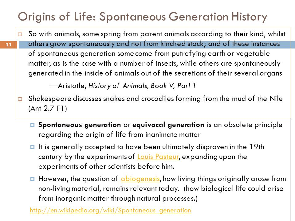 Origins of Life: Spontaneous Generation History