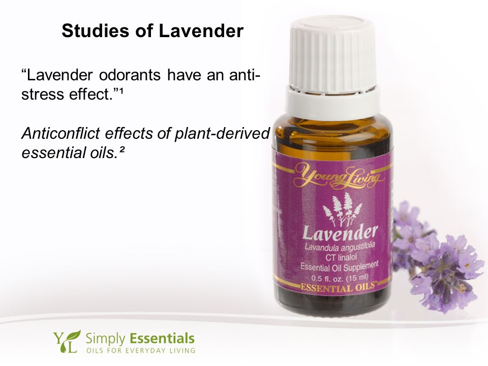 Studies of Lavender Lavender odorants have an anti-stress effect. ¹