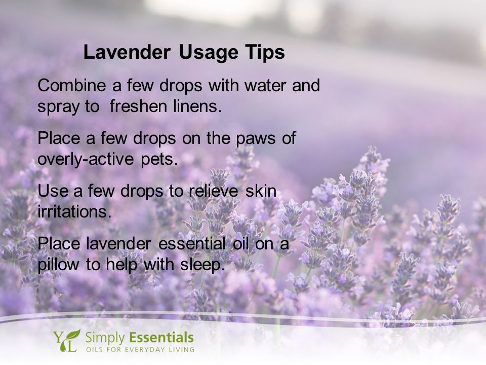 Lavender Usage Tips Combine a few drops with water and spray to freshen linens. Place a few drops on the paws of overly-active pets.