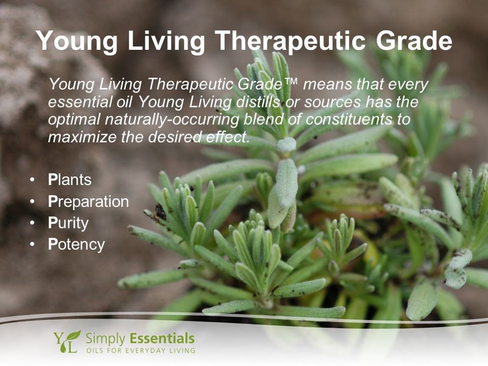 Young Living Therapeutic Grade