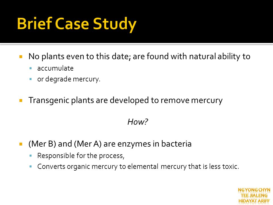 Brief Case Study No plants even to this date; are found with natural ability to. accumulate. or degrade mercury.