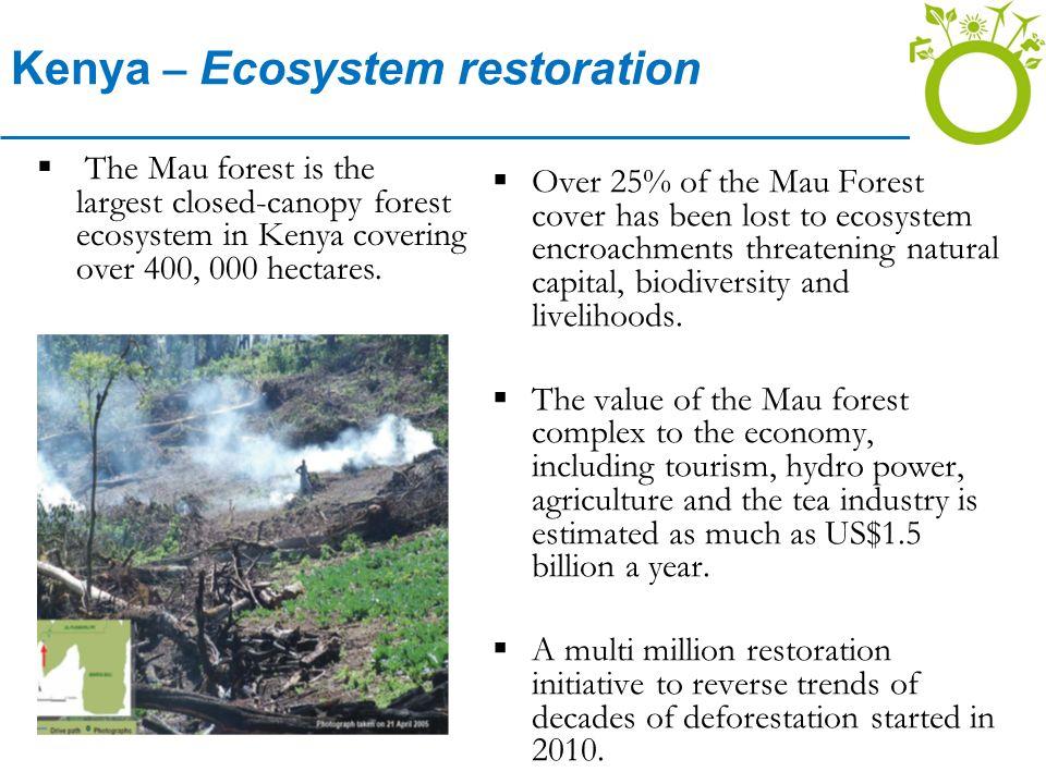Kenya – Ecosystem restoration