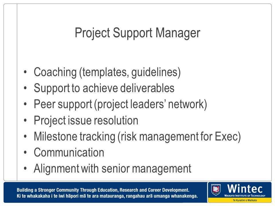 Project Support Manager