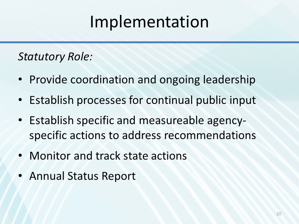 Implementation Statutory Role: