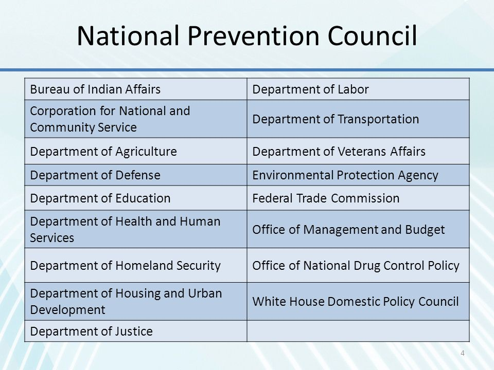 National Prevention Council